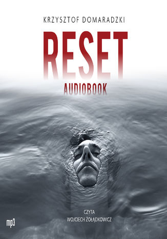 Ebook Reset