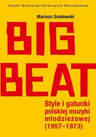 Okładka książki/ebooka Big Beat