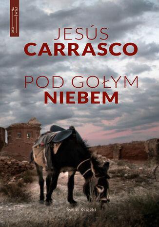Okładka książki/ebooka Pod gołym niebem