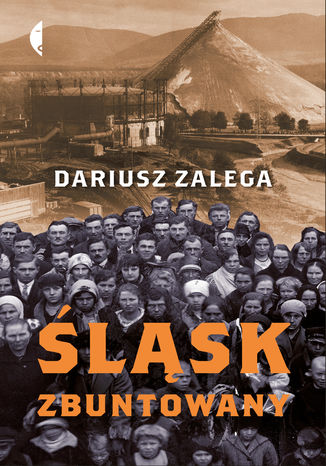 Okładka książki/ebooka Śląsk zbuntowany