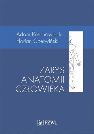 Okładka książki Zarys anatomii człowieka
