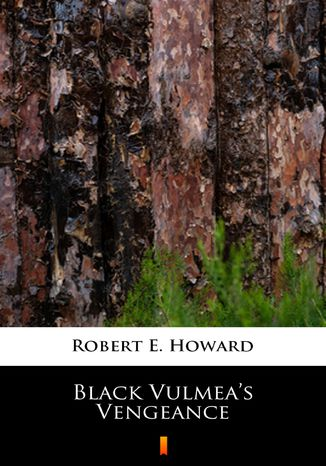 Okładka książki/ebooka Black Vulmeas Vengeance