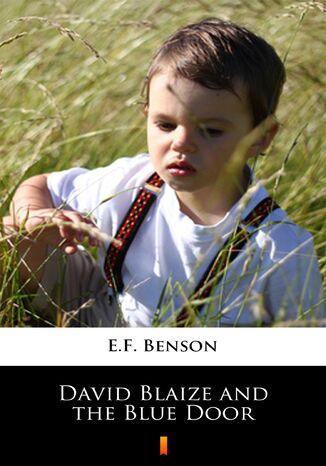 Okładka książki David Blaize and the Blue Door