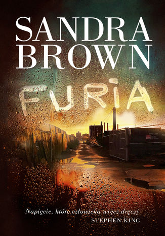 Okładka książki/ebooka Furia