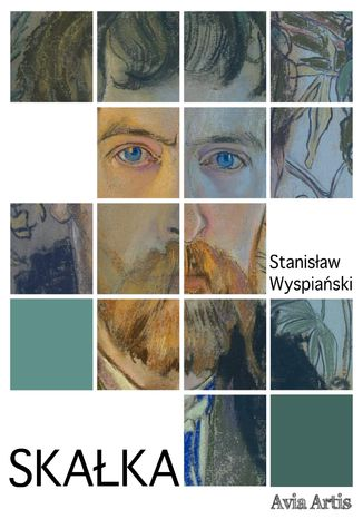 Okładka książki/ebooka Skałka