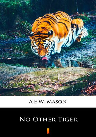 Okładka książki/ebooka No Other Tiger