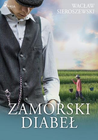Okładka książki/ebooka Zamorski diabeł