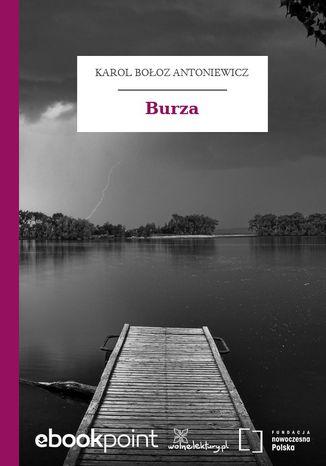 Okładka książki/ebooka Burza