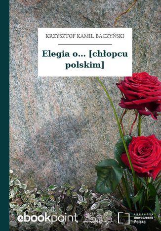 Okładka książki Elegia o... [chłopcu polskim]