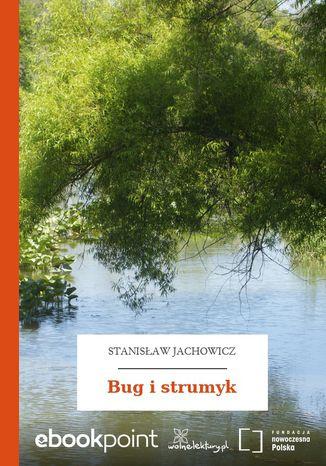 Okładka książki Bug i strumyk
