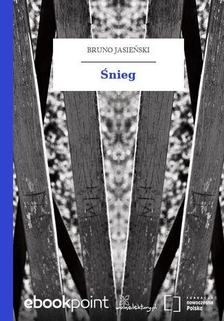 Okładka książki Śnieg