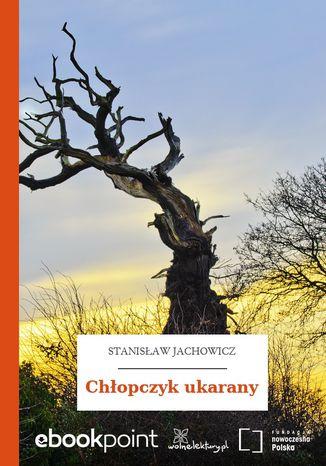 Okładka książki/ebooka Chłopczyk ukarany