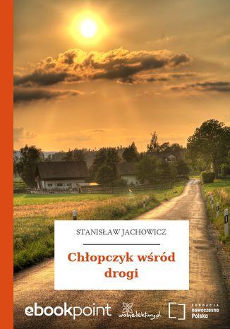 Okładka książki Chłopczyk wśród drogi