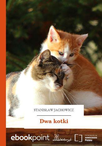 Okładka książki Dwa kotki