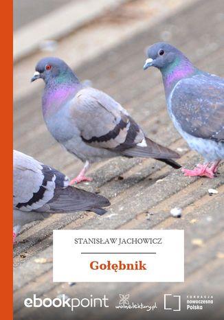 Okładka książki Gołębnik