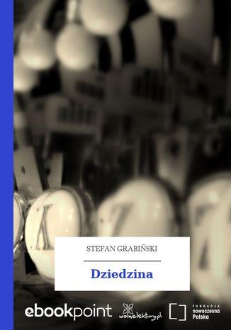 Okładka książki/ebooka Dziedzina