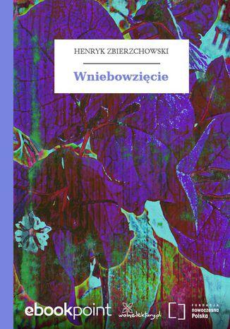 Okładka książki/ebooka Wniebowzięcie