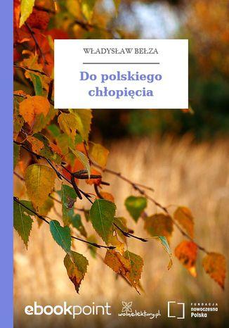 Okładka książki Do polskiego chłopięcia