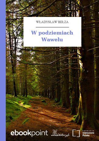 Okładka książki W podziemiach Wawelu