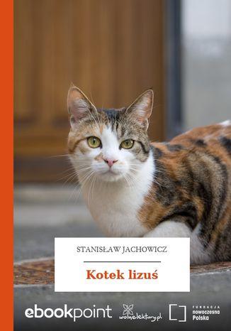 Okładka książki Kotek lizuś