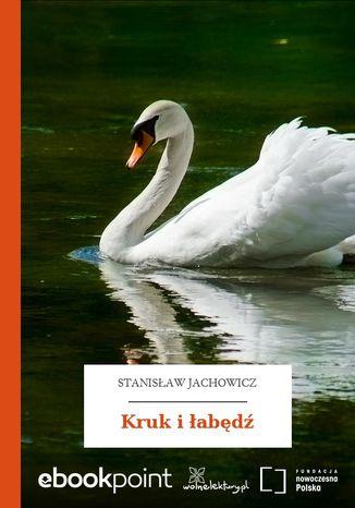 Okładka książki Kruk i łabędź