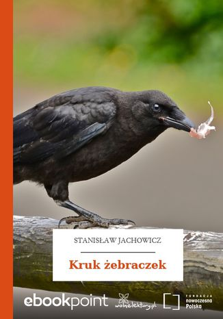 Okładka książki Kruk żebraczek