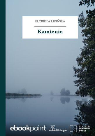 Okładka książki/ebooka Kamienie