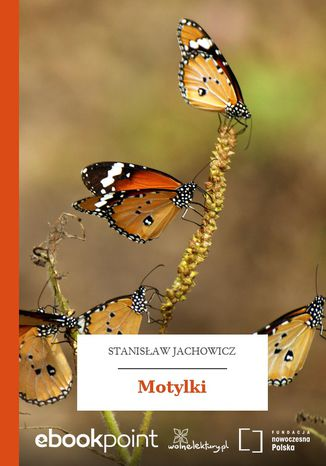 Okładka książki Motylki