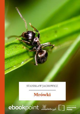 Okładka książki Mrówki