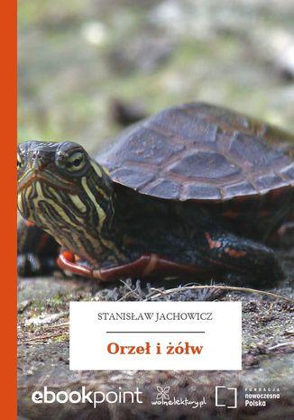 Okładka książki Orzeł i żółw