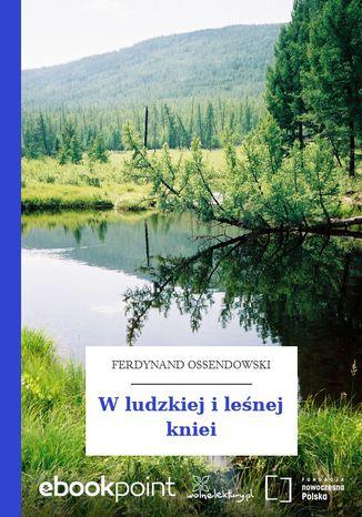 Okładka książki/ebooka W ludzkiej i leśnej kniei