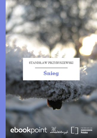 Okładka książki/ebooka Śnieg