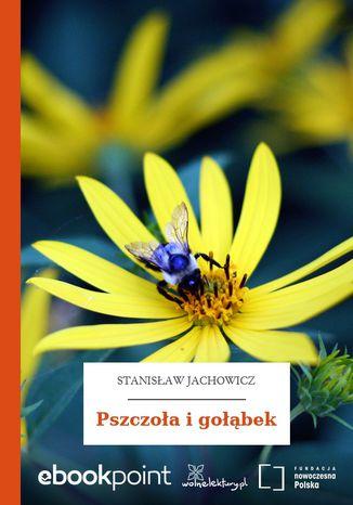 Okładka książki Pszczoła i gołąbek