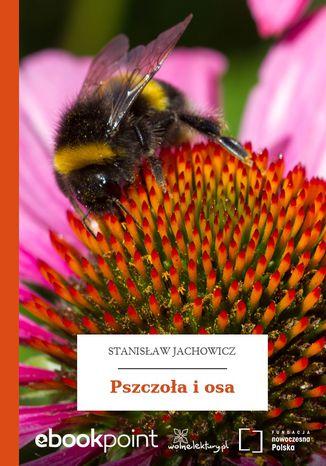 Okładka książki Pszczoła i osa