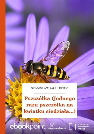Okładka książki Pszczółka (Jednego razu pszczółka na kwiatku siedziała...)