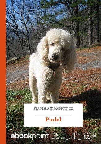 Okładka książki/ebooka Pudel