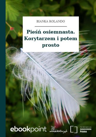 Okładka książki/ebooka Pieśń osiemnasta. Korytarzem i potem prosto
