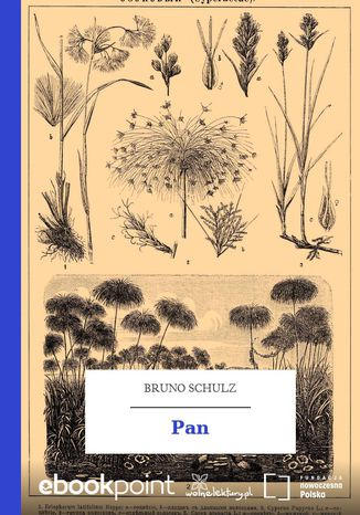 Okładka książki/ebooka Pan