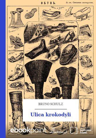 Okładka książki Ulica krokodyli