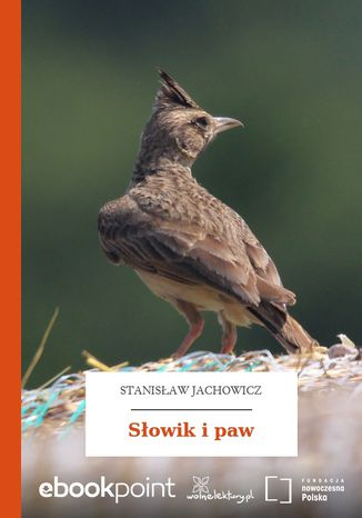 Okładka książki/ebooka Słowik i paw