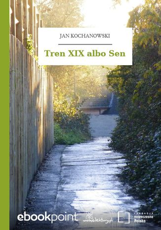 Okładka książki/ebooka Tren XIX albo Sen