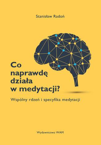 Okładka książki/ebooka Co naprawdę działa w medytacji?. Wspólny rdzeń i specyfika medytacji