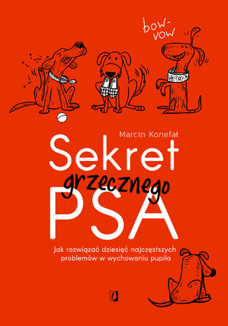 Okładka książki/ebooka Sekret grzecznego psa. Jak rozwiązać dziesięć najczęstszych problemów w wychowaniu pupila