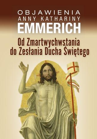 Okładka książki/ebooka Od Zmartwychwstania do Zesłania Ducha Świętego