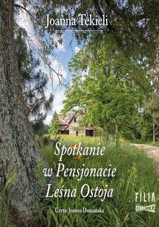 Okładka książki Spotkanie w Pensjonacie Leśna Ostoja