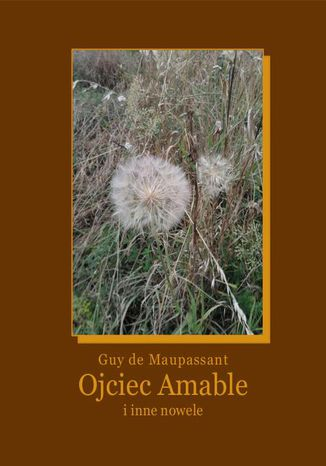 Okładka książki/ebooka Ojciec Amable