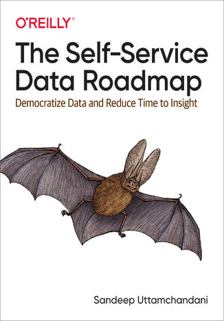 Okładka książki/ebooka The Self-Service Data Roadmap