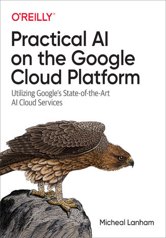 Okładka książki/ebooka Practical AI on the Google Cloud Platform