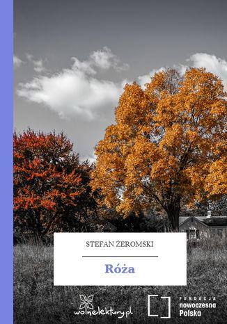 Okładka książki/ebooka Róża