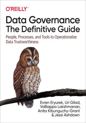 Okładka książki/ebooka Data Governance: The Definitive Guide